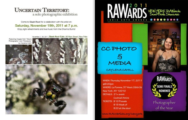 flyers for RAWARDS and Uncertain Territory