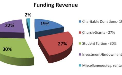 Revenue pie chart