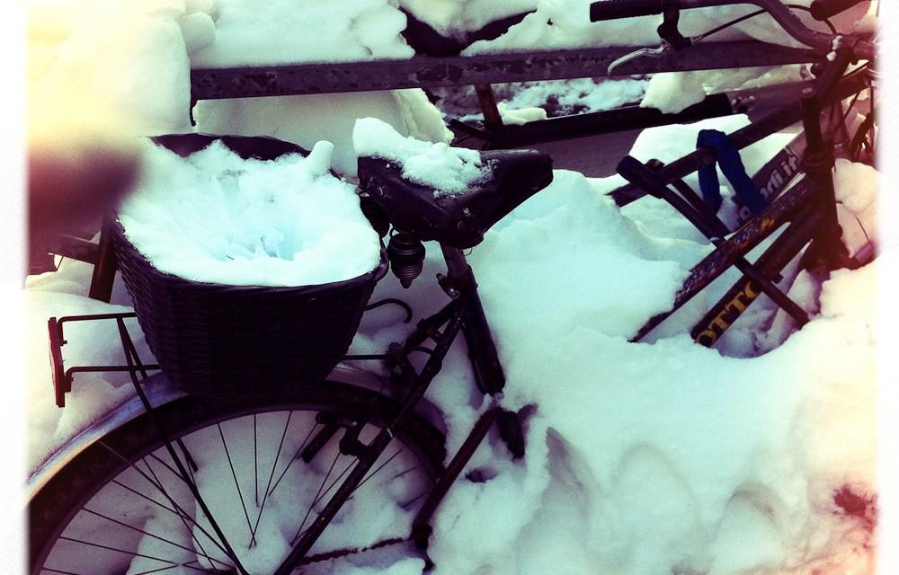 Ho fatto il pieno di neve