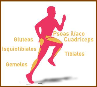 skipping musculos copia