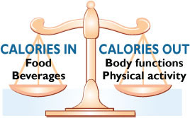 fitness formula is calories in, calories out