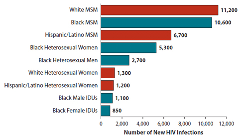 """Shown here is a vertical bar chart titled, """"Estimates of New HIV Infections in the United States, 2010, for the Most Affected Subpopulations"""".    White MSM  = 11,200  Black MSM  =  10,600  Hispanic/Latino MSM = 6,700  Black Heterosexual Women  = 5,300  Black Heterosexual Men = 2,700  White Heterosexual Women = 1,300  Hispanic/Latino Heterosexual Women = 1,200  Black Male IDUs = 1,100  Black Female IDUs = 850  Subpopulations representing 2% or less of the overall US epidemic are not reflected in this chart."""