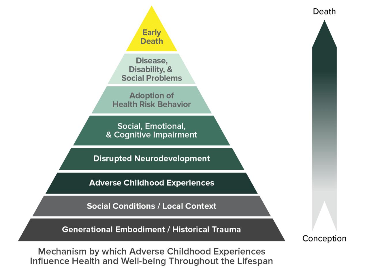 Adverse Childhood Experiences Presentation Graphics