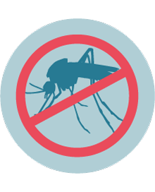 Control young mosquitoes