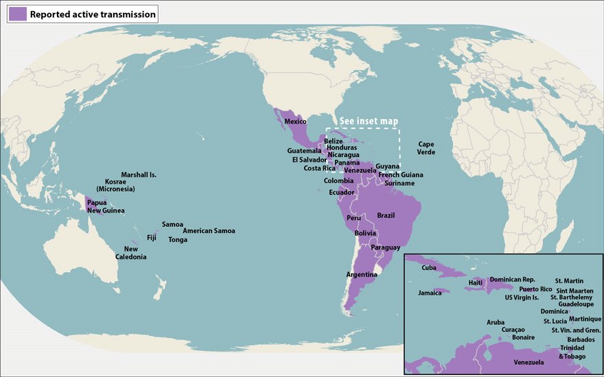 World map showing countries and territories with reported active transmission of Zika virus (as of May 19, 2016). Countries are listed in the table below.