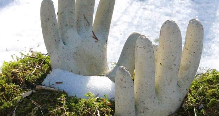 Två betong händer som sticker upp ur grön mossa