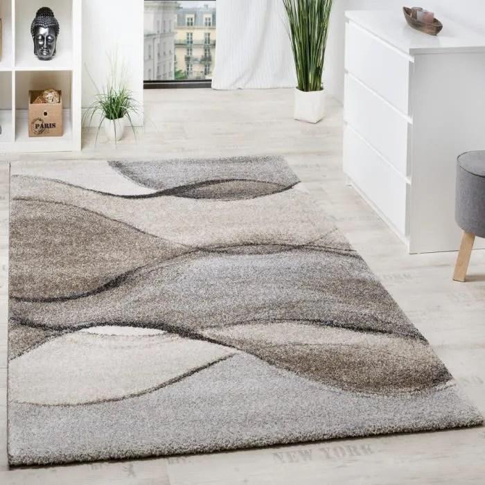 tapis tisse moderne haute qualite mouchete motif v