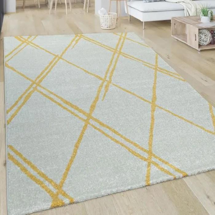 tapis de salon poils ras avec design scandinave e