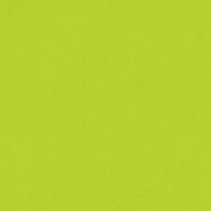 papier peint uni et colore vert anis 10 ml x 0 53