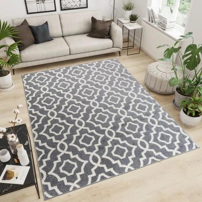maroko tapis de salon chambre design moderne fin g