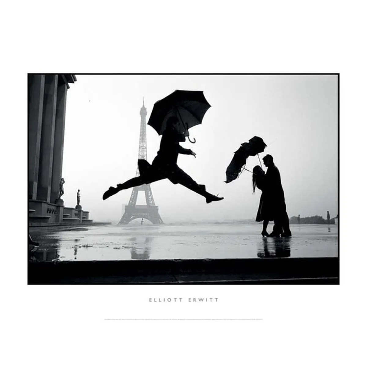 Affiche Noir Et Blanc Paris 1989 Elliot Erwitt Achat Vente Tableau Toile Cdiscount