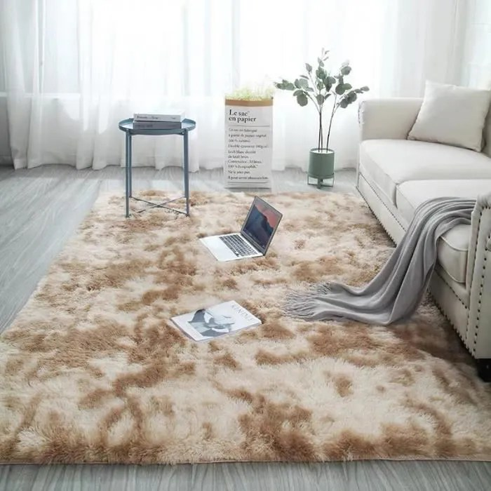 tapis doux salon tapis antiderapant moelleux cha