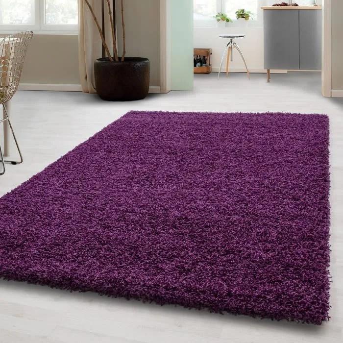 tapis de salon violet