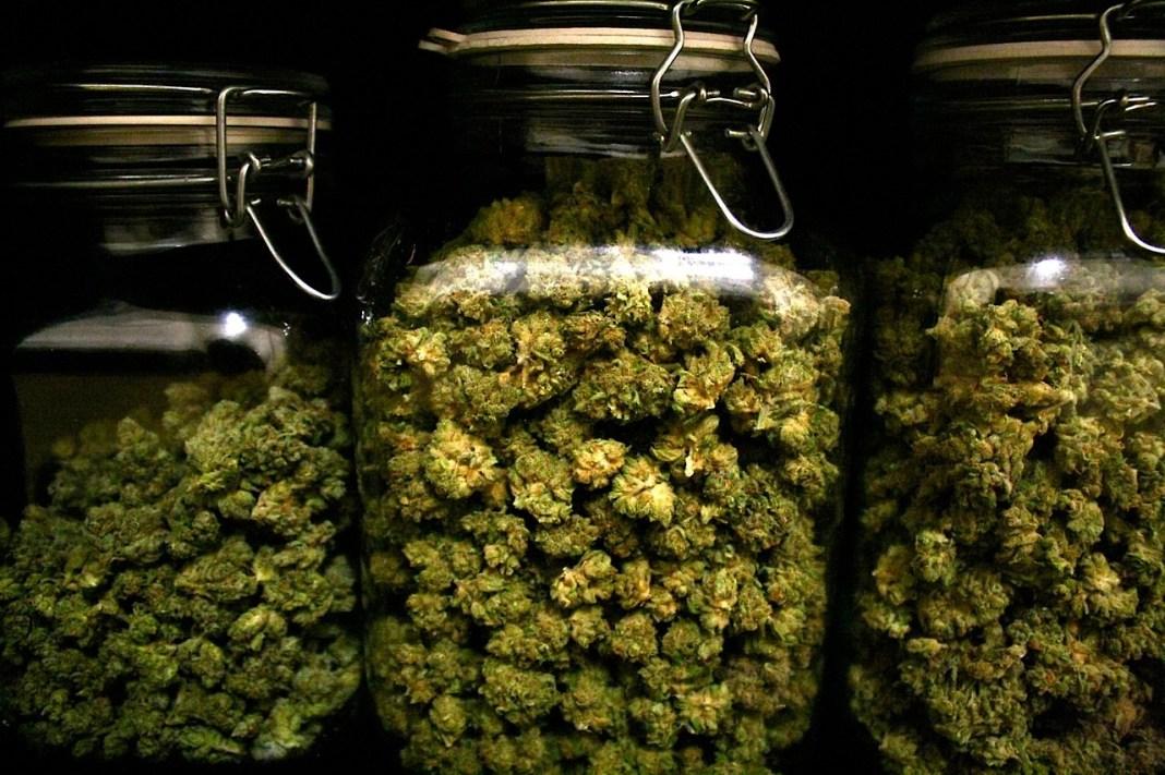 marihuana-1.jpg