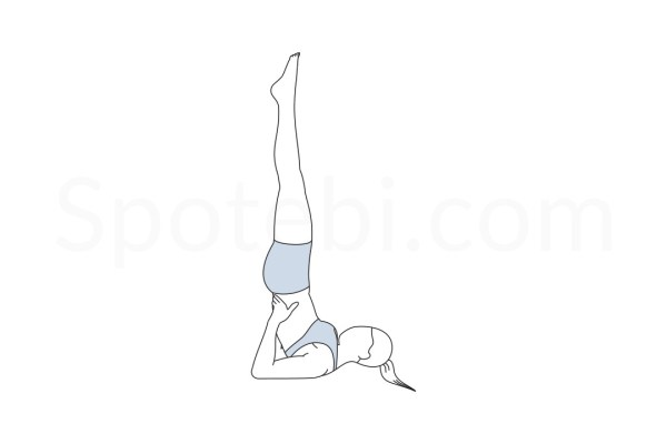 Shoulderstand Pose Sarvangasana