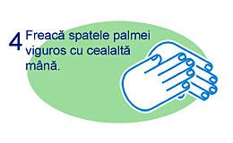 Spalare corecta maini 4
