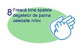 Spalare corecta maini 8