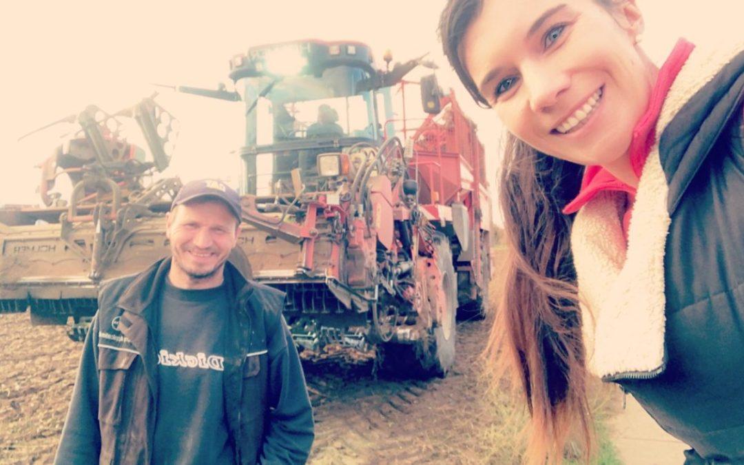 Landwirtschaft in Flörsheim – Ackerernte und Versuchsfelder 2020