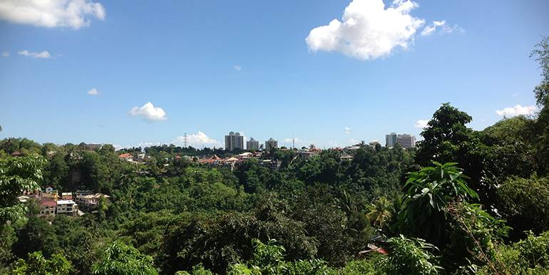 overlooking-lot-for-sale-at-vista-grande-pardo-cebu-city (31)