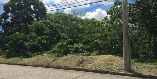 Maria Luisa Estate Park – Lot For Sale – Phase 5