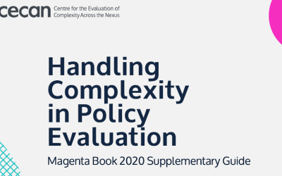 Handling Complexity in Policy Evaluation – Magenta Book 2020 Supplementary Guide