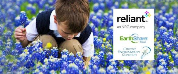Reliant--EcoShare-Banner-bluebonnets