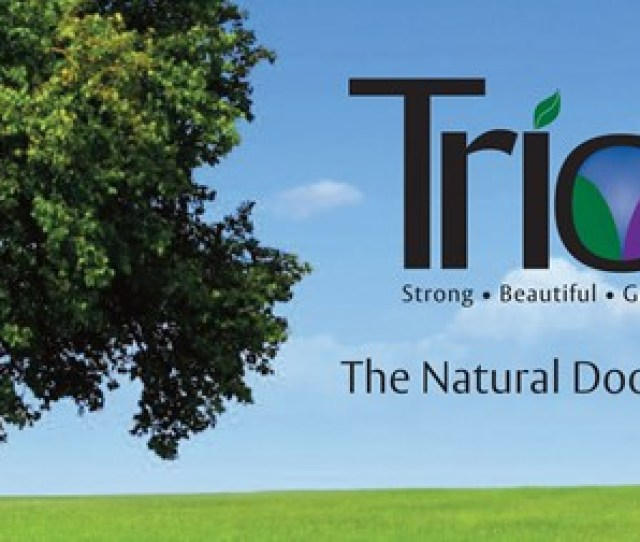 Strong Beautiful And Green Best Describes Trio The Innovative New Product From Ceco Door Trio Is A Fusion Of Composite And Steel Stiffened Cores To