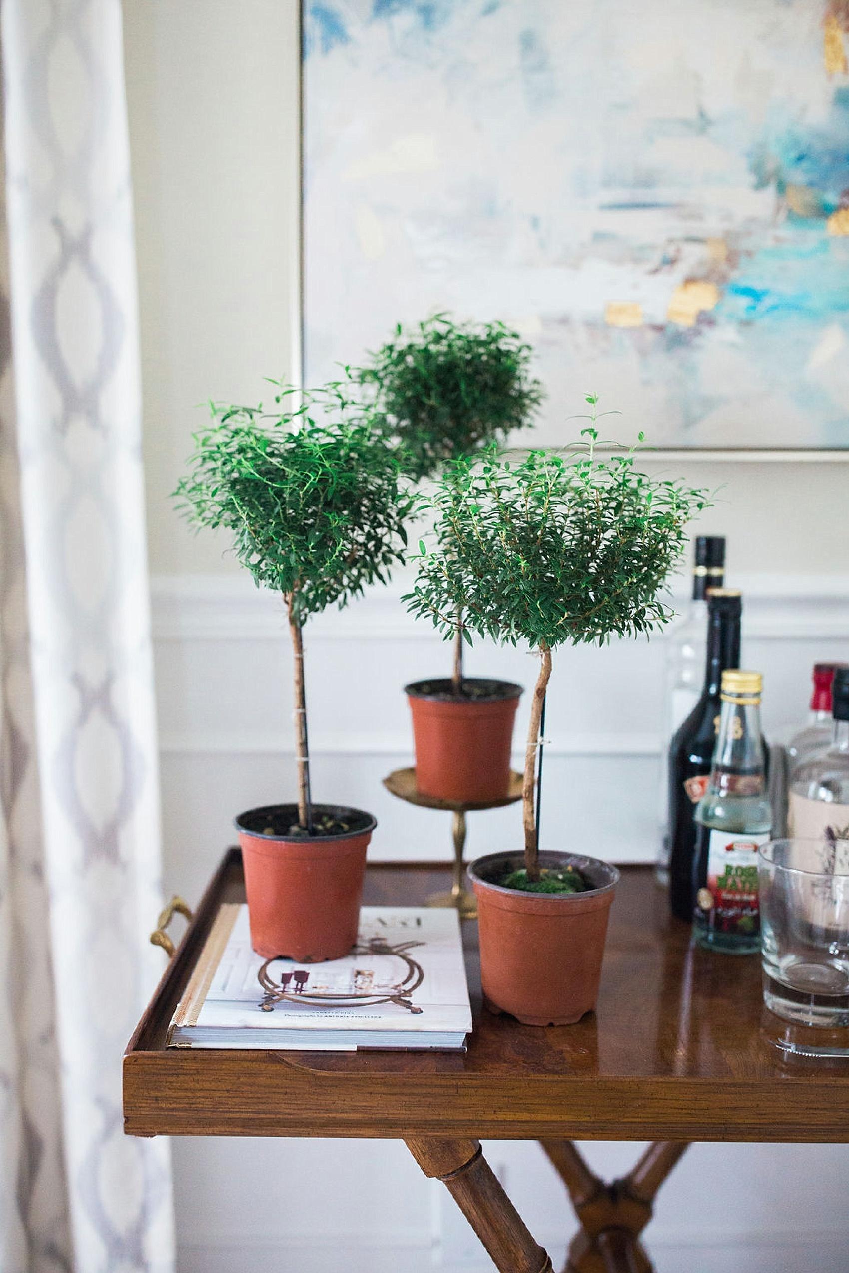 4 Unique Housewarming Gift Ideas | Cedar & Rush