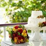 Cedar House Inn wedding - Porch Cake