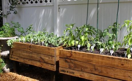 Cedar House Garden of Eatin vegetable beds