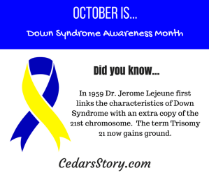 October Down Syndrome Awareness Facts Day #11