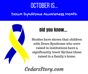 October Down Syndrome Awareness Month Facts Day #12