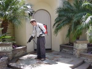 A professional pest control service 2