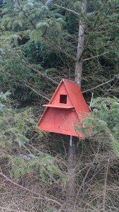 Bird boxes installed on site