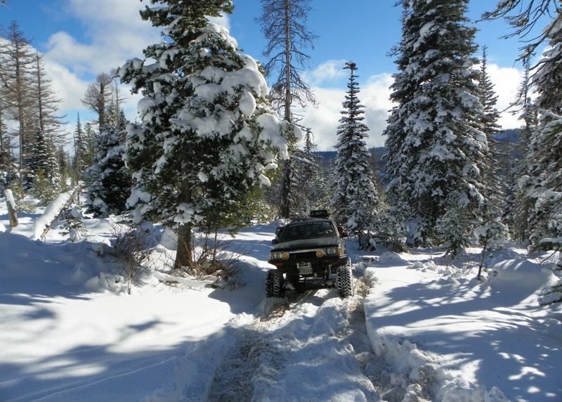 Photos: EWOR Thanksgiving 4x4 Run at the Ahtanum State Forest 24