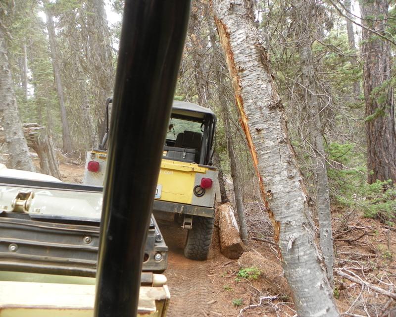 Photos: Yellow Jeep Run - Little Rattlesnake 30