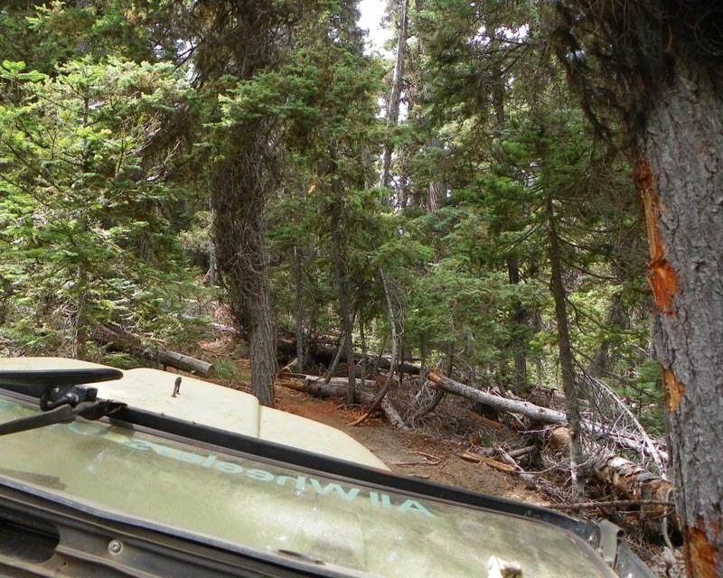 Photos: Yellow Jeep Run - Little Rattlesnake 46
