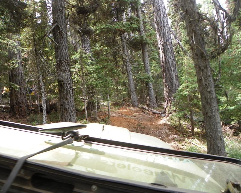 Photos: Yellow Jeep Run - Little Rattlesnake 50