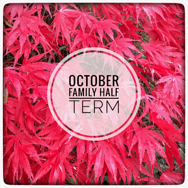 October Family Half Term SPECIAL OFFER…at Beechwood Court