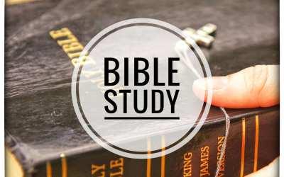Bible Study Week