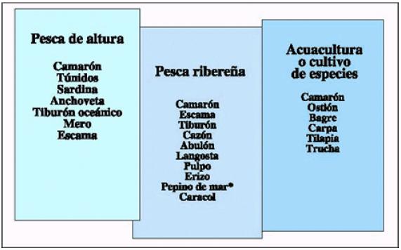 2000_Grafica.89_LB-SEMARNAP