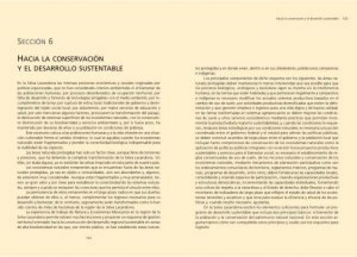seccion-6_imagen