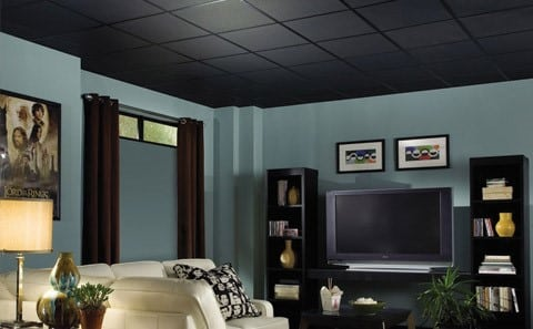 can you buy black suspended ceiling