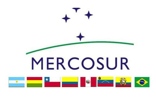 """""""El Mercosur en disputa: las tensiones por la naturaleza económica del bloque"""""""