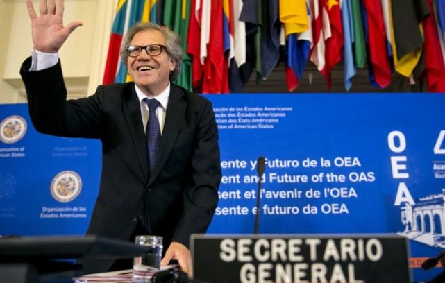 El triunfo de Venezuela en la OEA, Almagro y la derecha venezolana (por Silvina Romano)