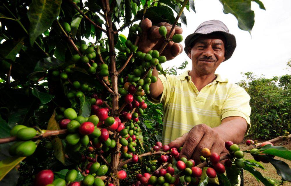 Colombia: de la economía del conflicto a la del posacuerdo