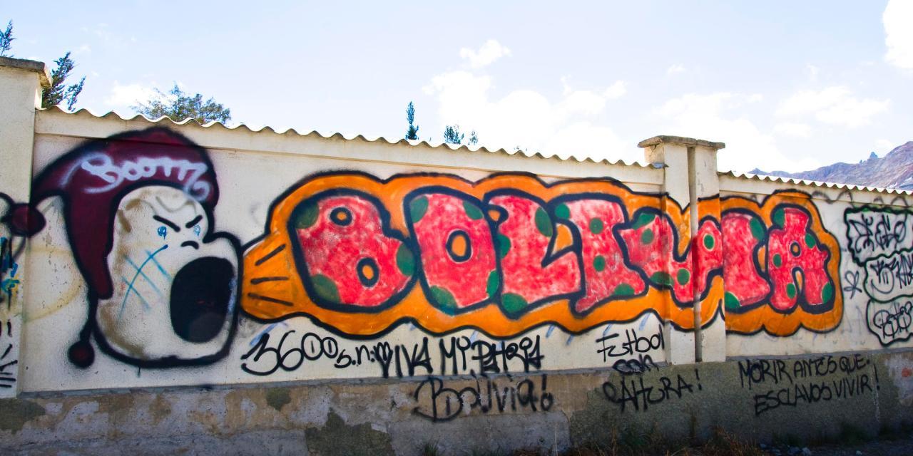 Contornos de la disputa política en Bolivia