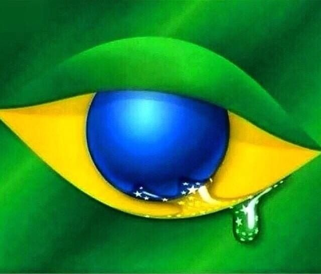 ¿Por qué Brasil votó así?