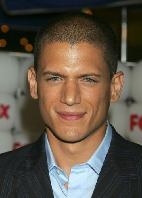 Wentworth Miller Height, Weight, Age, Biceps Size, Body Stats