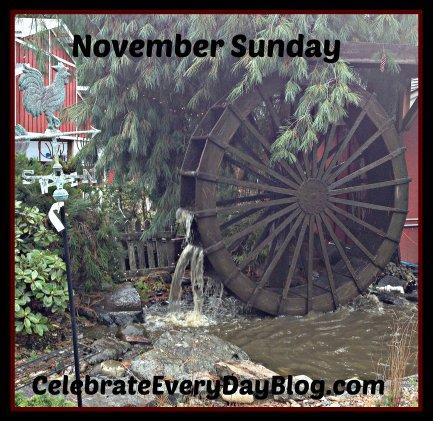 November Sunday